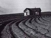 Dorothea lange: great depression