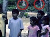 Alieno nella Foresta Amazzonica: Hoax?