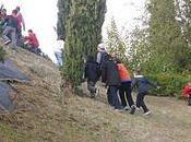 Attività all'aria aperta: Castagnata