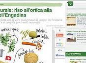 Cucina naturale: riso all'ortica alla maniera dell'Engadina