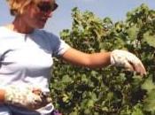 Coldiretti vendere terre pubbliche giovani coltivatori buona cosa