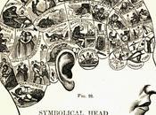 Frenologia fisiognomica