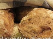 Bocconcini pane alle cipolle vino