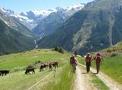 Vacanze Natale 2011: turismo lento monasteri oltre alla classica montagna