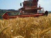 Finanziamenti imprese agricole Emilia Romagna