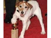 Golden Globe: quasi febbre Oscar!!!