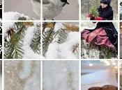 TRADIZIONI Collage Dedicato all'inverno