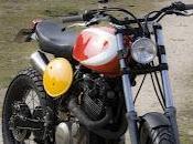 """""""Dirt Rad"""" Radical Ducati"""