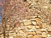 Armungia, archeologia arte sarda