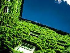 Eco-logia Politica: Germania Italia Palla Centro