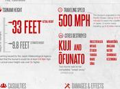 tsunami giapponese infografica dimenticare