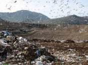 Campania: Cava Sari chiuderà.