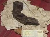 dito umanoide trovato Egitto. Video