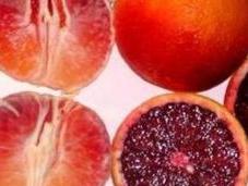 Arance rosse: ecco perché sono così salutari