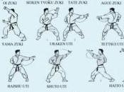 Tecniche pugno Karate