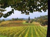 Corso degustazione vino rosso della Valtenesi Confraternita Groppello